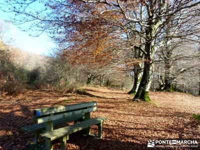Parques Naturales Urbasa-Andía y Aralar - Nacedero del Urederra; senderismo vacaciones